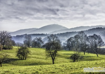 DSC1015_OK_Gaggenau_Winkel_Wiesen_color-400x284 Gaggenau/Umgebung